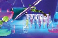 واردات محصولات زیستی با توسعه فعالیت شتابدهندهها کاهش مییابد
