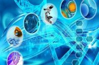 برپایی مدرسه ملی زیستفناوری ایران در ۶ محور اصلی زیست فناوری