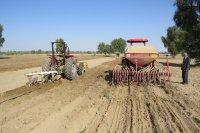 ظرفیت استارتاپ های بخش کشاورزی در آران و بیدگل استفاده شود