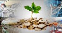 اعطای بیش از ۱۲ هزار میلیارد تومان خدمات مالی به شرکتها، تقاضای صندوق نوآوری از وزارت نفت