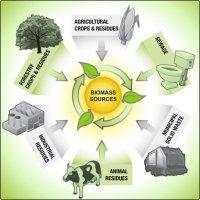 قرارداد تولید برق از زباله های تهران امضا شد