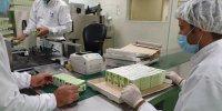 تولید انبوه داروی موثر در بهبود علائم ریوی کرونا در مشهد آغاز شد