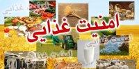 طرح تقویت امنیت غذایی کشور در انتظار ابلاغ شورای نگهبان/گرانی محصولات کشاورزی پایان مییابد؟