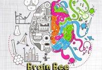 رقابت مغزها؛ معرفی برگزیدگان مسابقه ملی